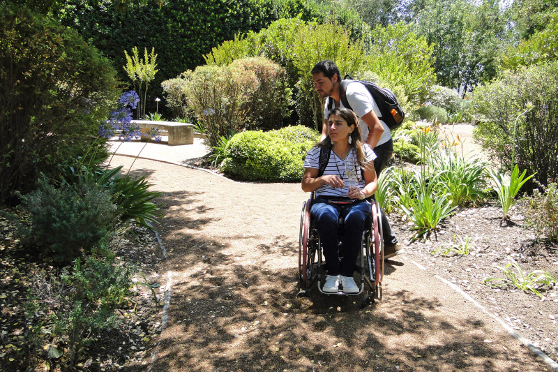 Traveler uses a wheelchair to navigate unpaved dirt pathways on Winery.
