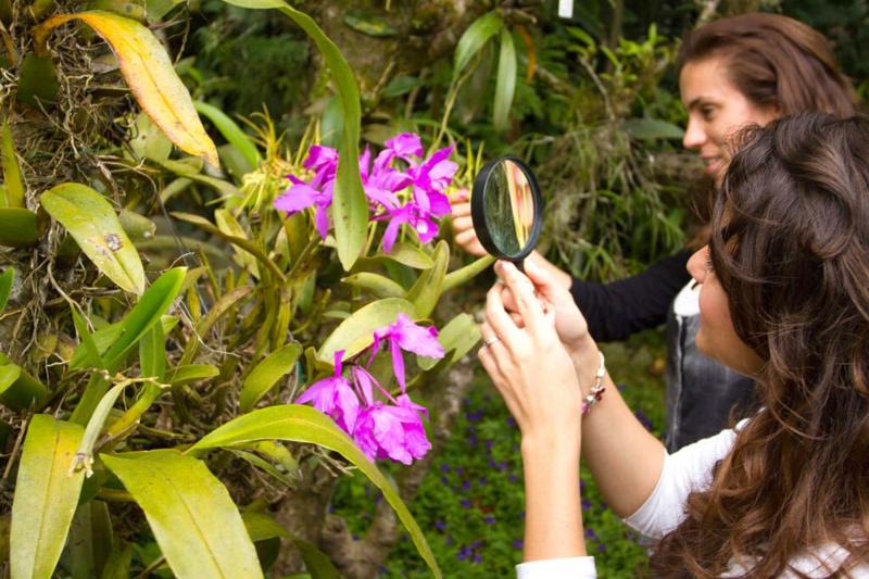 Monteverde Botanic Gardens