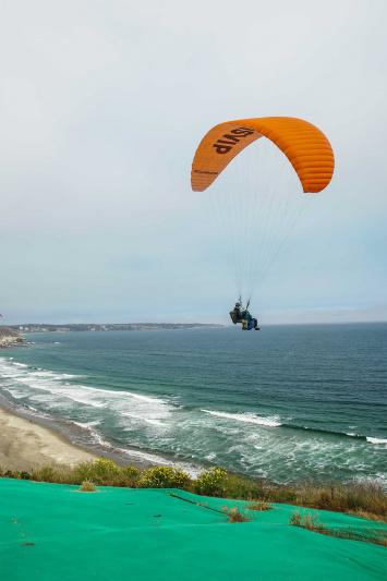 Paragliders explore the ocean and skies.