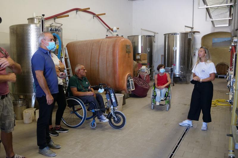 Wine tour of cellar with fermentation tanks