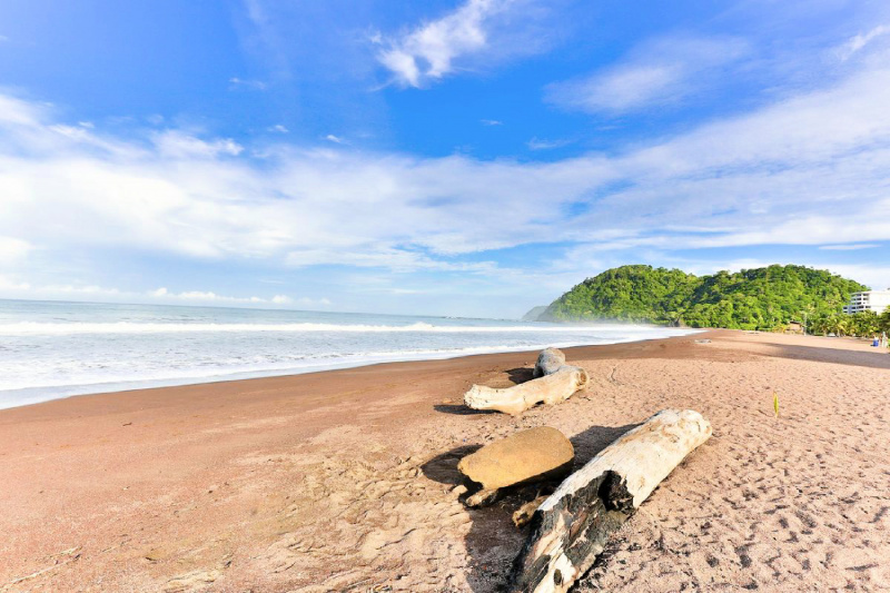 Jaco Beach sits next to the hotel and the a forested area.