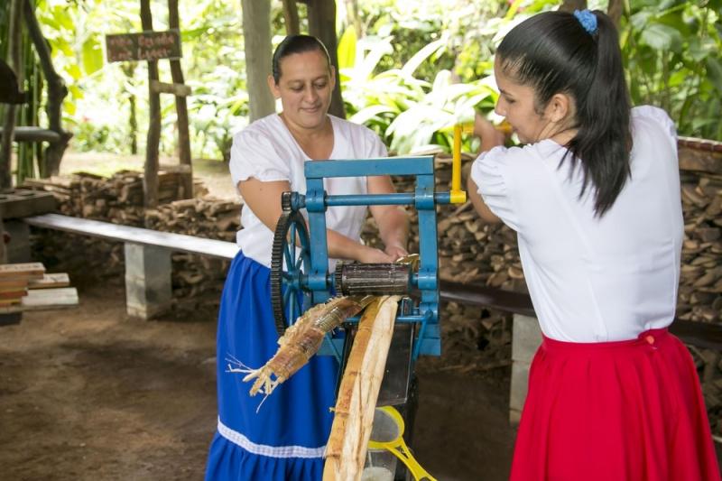 Arenal Vida Campesina attendants crushing sugar cane for juice