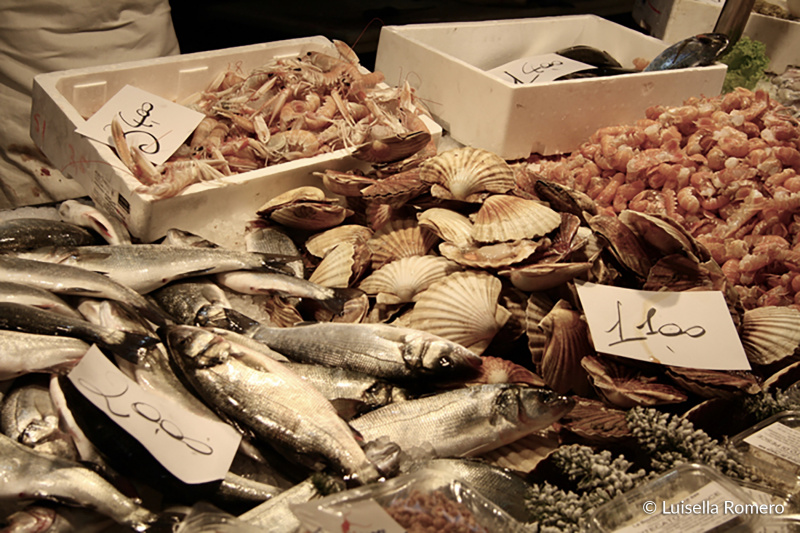 Rialto market display with fresh seafood and shells