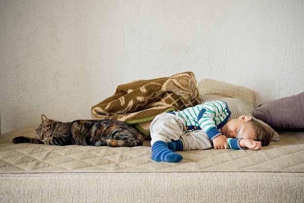 Jongen en kat slapen samen op de bank