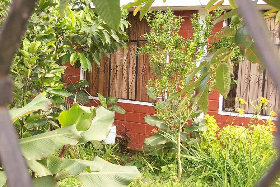 Het huis van de buren met tralies voor de ramen
