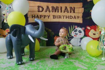 Smash cake Damian