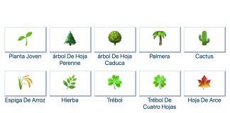 Los emojis de plantas son uno de los símbolos más reconocidos para la naturaleza, pero ¿sabes que tipo de vegetación es cada uno de éstos?