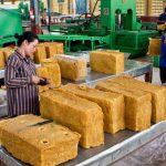 cambodia-rubber