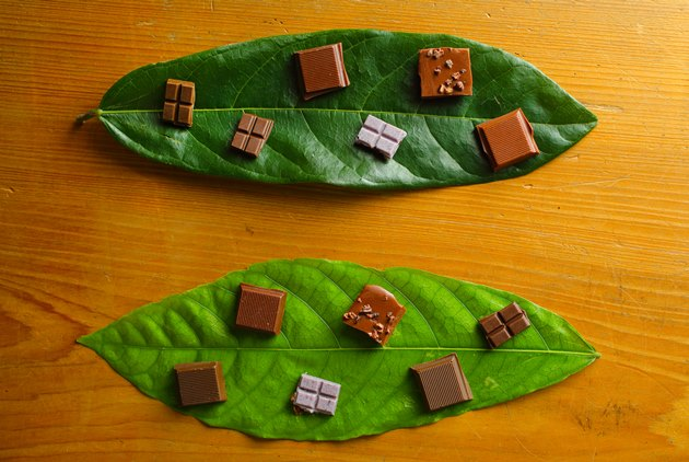 Taiwanese Chocolate Seduces the World