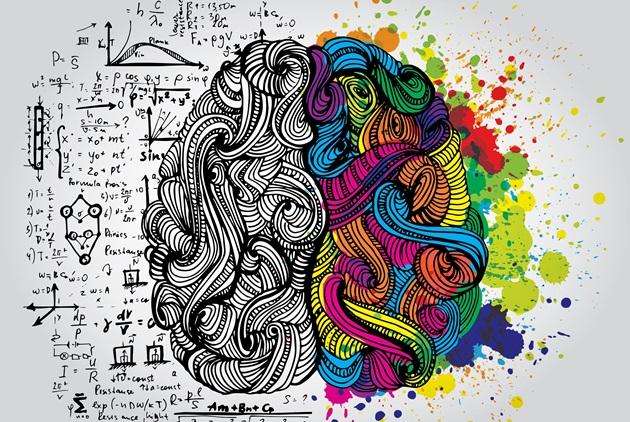 大腦是個很棒的東西,動腦會燃燒熱量嗎?