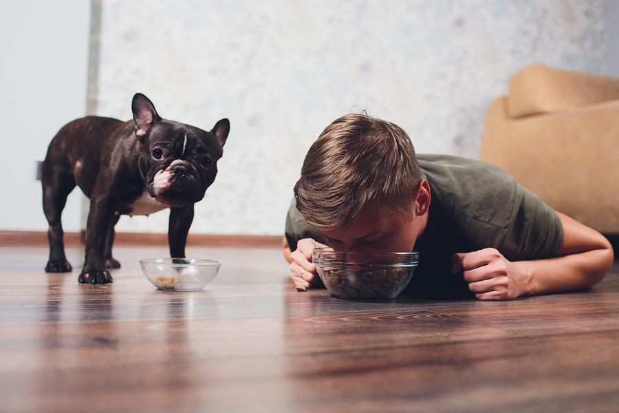 humanizar a tu mascota