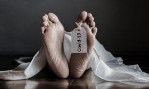 Muertes Covid México