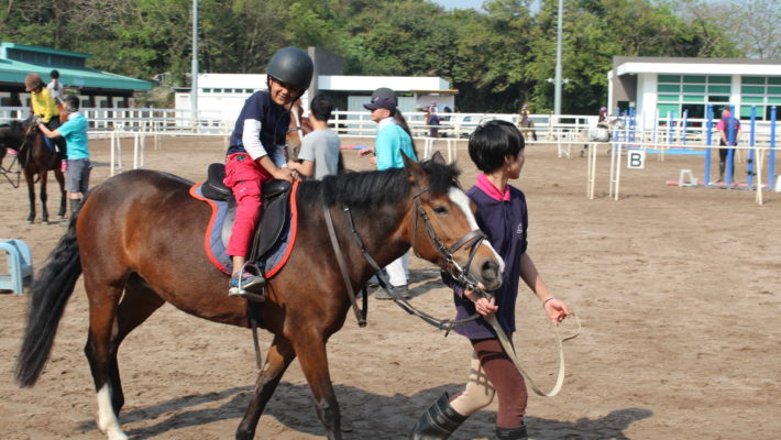 Horse Riding Day