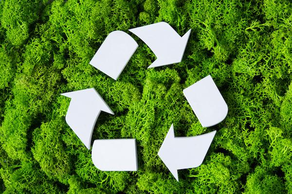 sustentability
