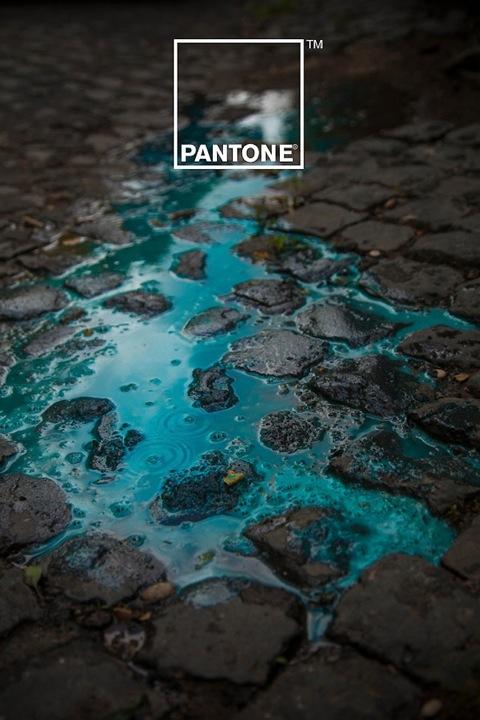 Pantone-en-charcos-de-lluvia3