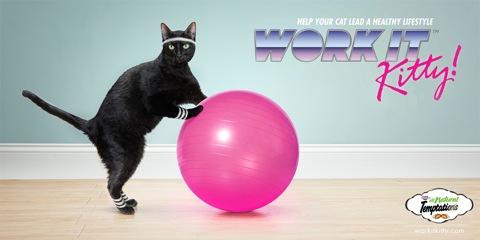 Temptations-Cat-Treats-Work-it-Kitty1