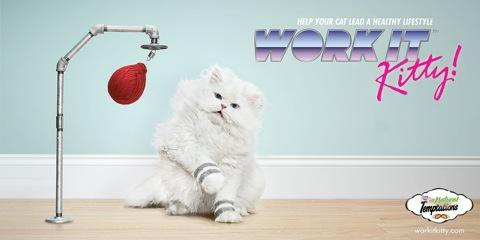 Temptations-Cat-Treats-Work-it-Kitty2