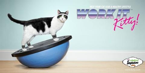 Temptations-Cat-Treats-Work-it-Kitty5