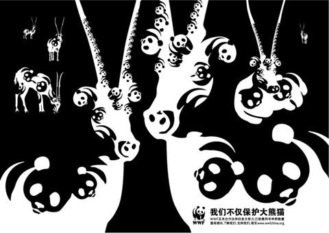WWFPandaAntelope-1024x724