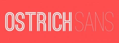 ostrich-sans-1-e1344693325110