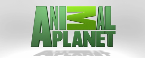 AnimalPlanet2