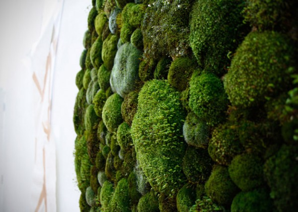 Moss-Graffiti-by-Anna-Garforth-6-600x428