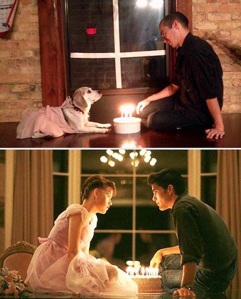 dog-movies-3