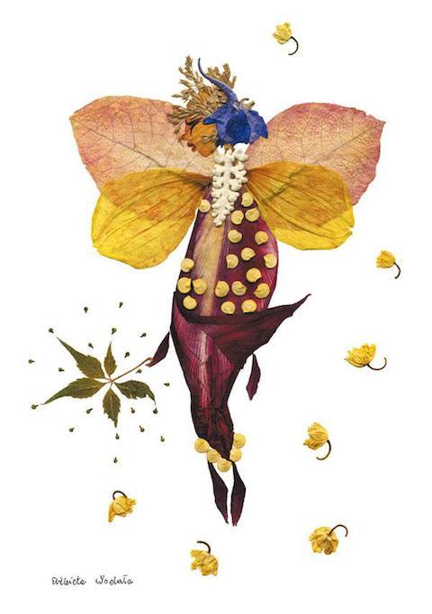 dried-pressed-flower-art-florotypie-elzbieta-wodala-18__605