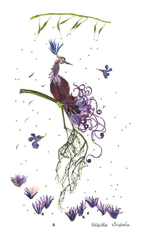 dried-pressed-flower-art-florotypie-elzbieta-wodala-24__605