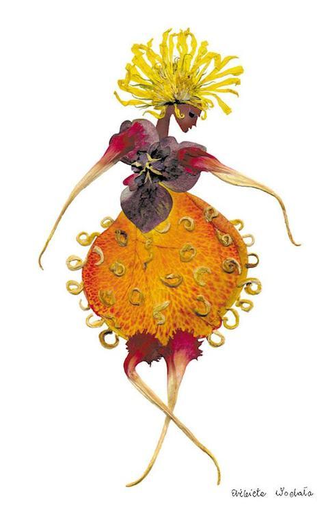 dried-pressed-flower-art-florotypie-elzbieta-wodala-35__605