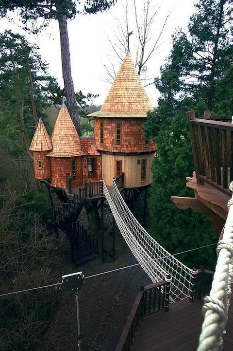 Living-the-Highlife-Tree-House
