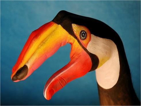 e pelican
