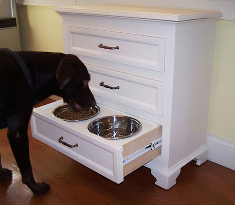 inventions-for-dog-lovers-1