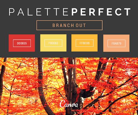 Color-Palettes-Branchingout-02