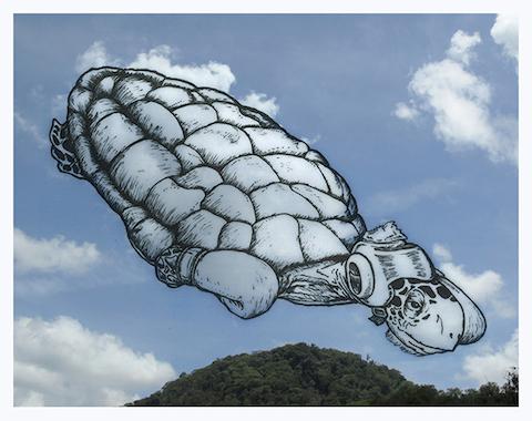 SC - 05 Boxing Turtle Cloud