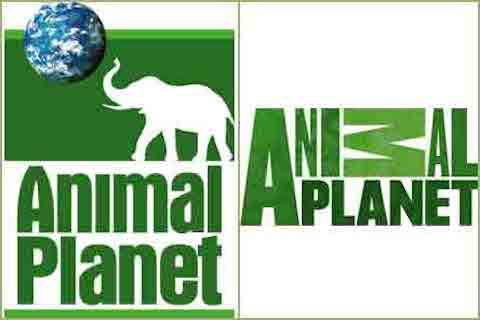 animal_planet_logo
