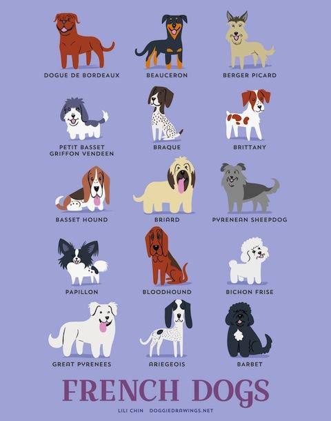 doggiedrawings4