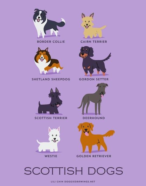 doggiedrawings6