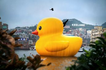 rubberduckkeelungwithcrows