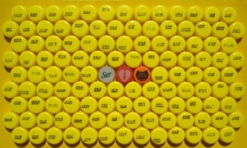 EGAR MURILLO-Ejercicio existencial-Tapas plásticas sobre tela-26.5x45cm-2012