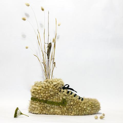 shoe_grasshopper1