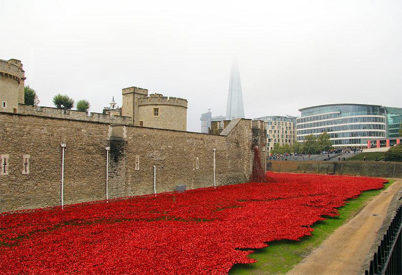 888246-ceramic-poppies-tower-of-london-remembrance-day-designboom-04