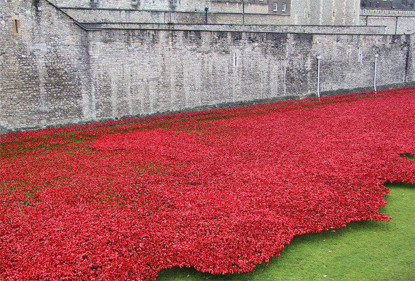 888246-ceramic-poppies-tower-of-london-remembrance-day-designboom-09