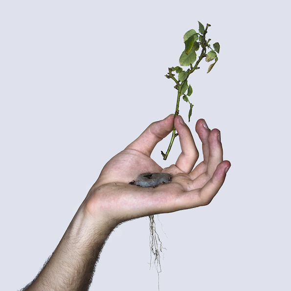 david-cata-grows-a-plant-in-the-palm-of-his-hand-designboom-021
