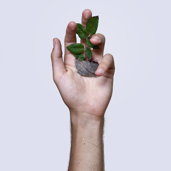 david-cata-grows-a-plant-in-the-palm-of-his-hand-designboom-04