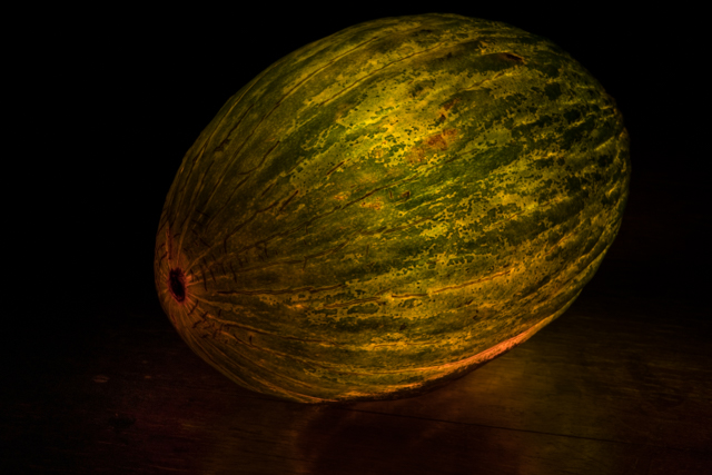 PP-Christmas-Melon