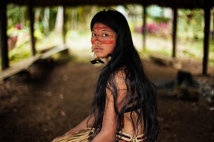 Selva Amazona, Ecuador
