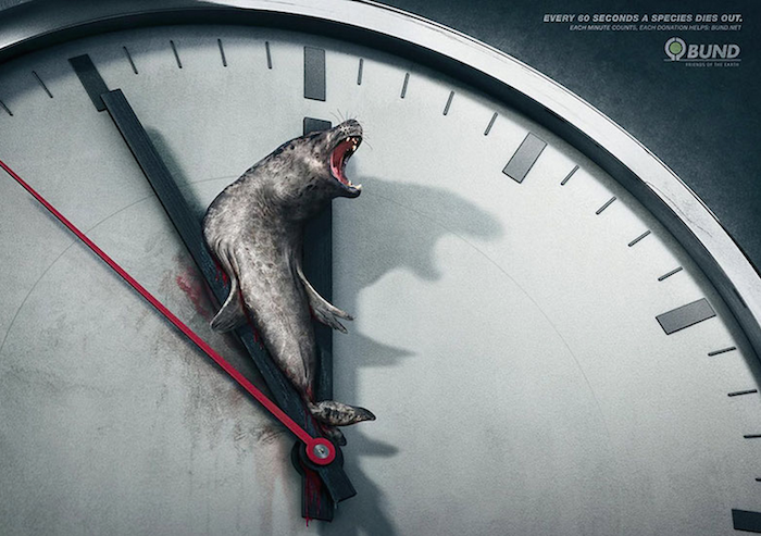 CAMPAÑA SOCIAL Every 60 seconds a species dies out