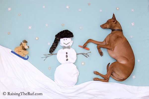 Ruf-Snowman