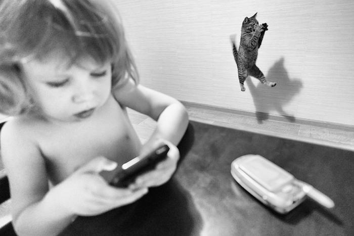 Cat-mothers